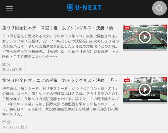 U-NEXT全日本テニス選手権決勝,画像