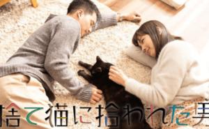 捨て猫に拾われた男,画像