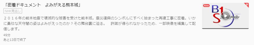 BS1スペシャル「よみがえる熊本城」U-NEXTキャプチャ,画像